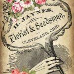 victorian vintage florist