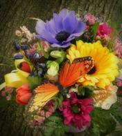butterfly flower arrangment