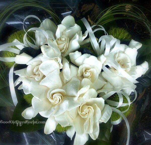 heart of gardenias