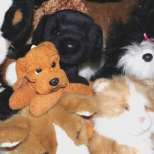 Animal Kingdom Stuffies