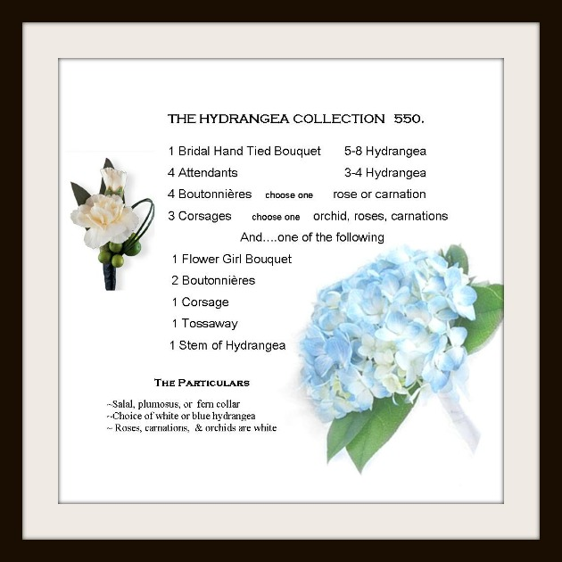 hydrangea wedding package