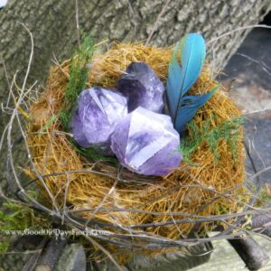 Really cool archives good old days florist birds nest of crystals voltagebd Choice Image